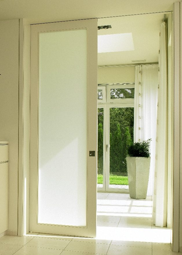 Glazed pocket door